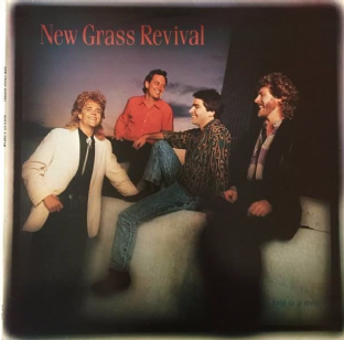 New Grass Revival ‎- Hold To A Dream (LP) (VG+/VG+)